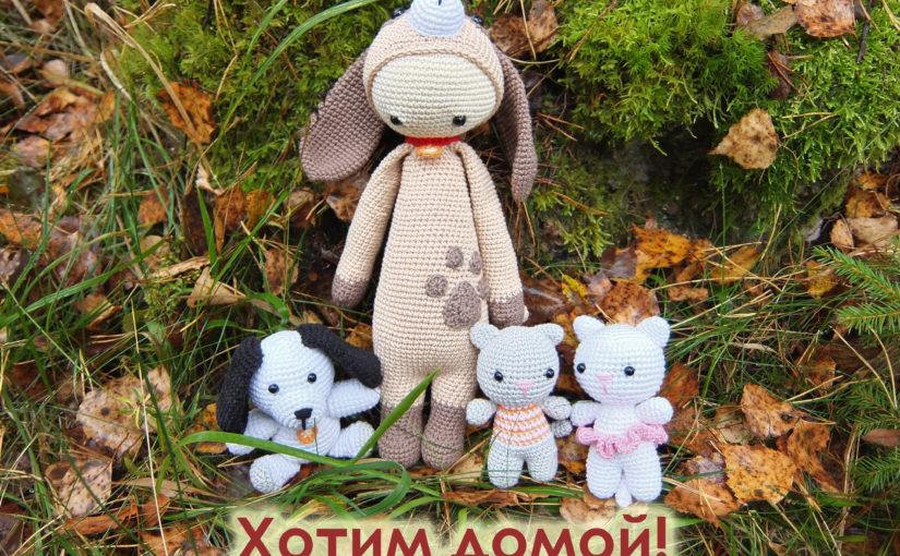 Помощь бездомным животным в Санкт-Петербурге